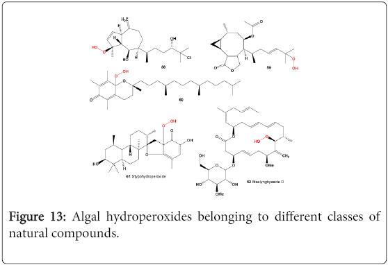 molecular-genetic-medicine-Algal-hydroperoxides-classes