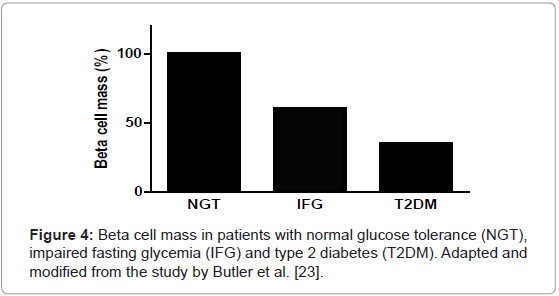 molecular-genetic-medicine-Beta-cell-mass-patients