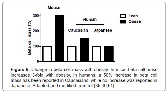 molecular-genetic-medicine-Change-beta-cell-mass
