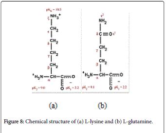 molecular-genetic-medicine-Chemical-structure-glutamine