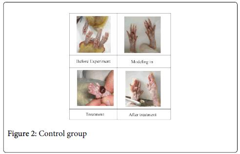 molecular-genetic-medicine-Control-group