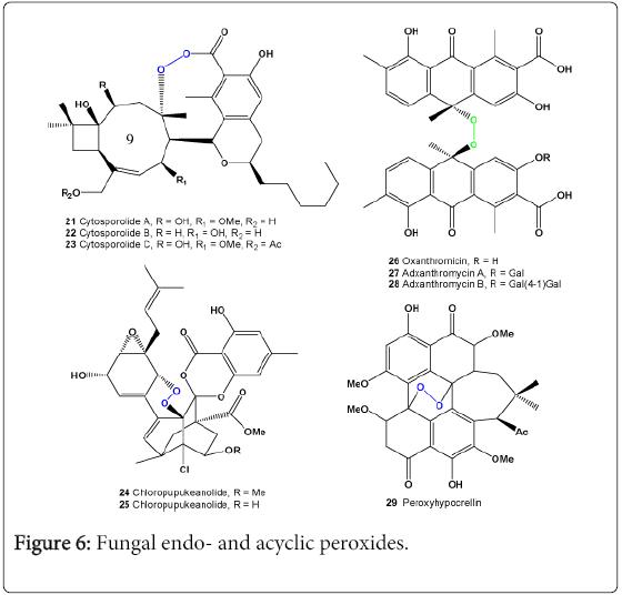 molecular-genetic-medicine-Fungal-acyclic-peroxides