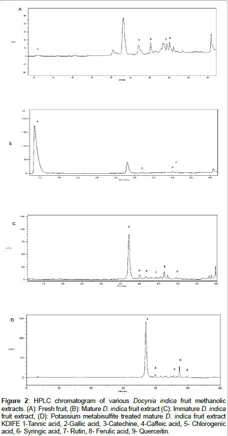 molecular-genetic-medicine-HPLC-chromatogram
