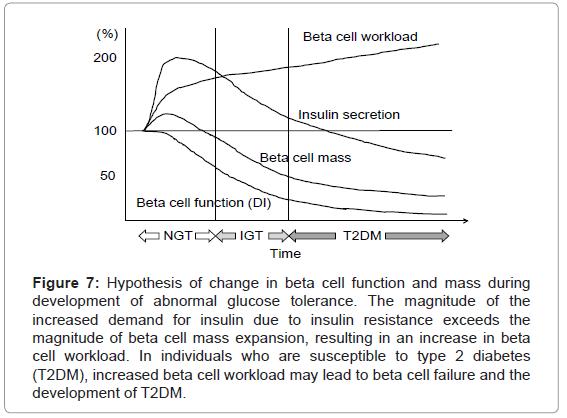 molecular-genetic-medicine-Hypothesis-change-beta-cell