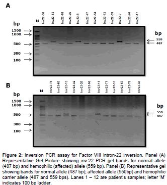 molecular-genetic-medicine-Inversion-Factor-Picture