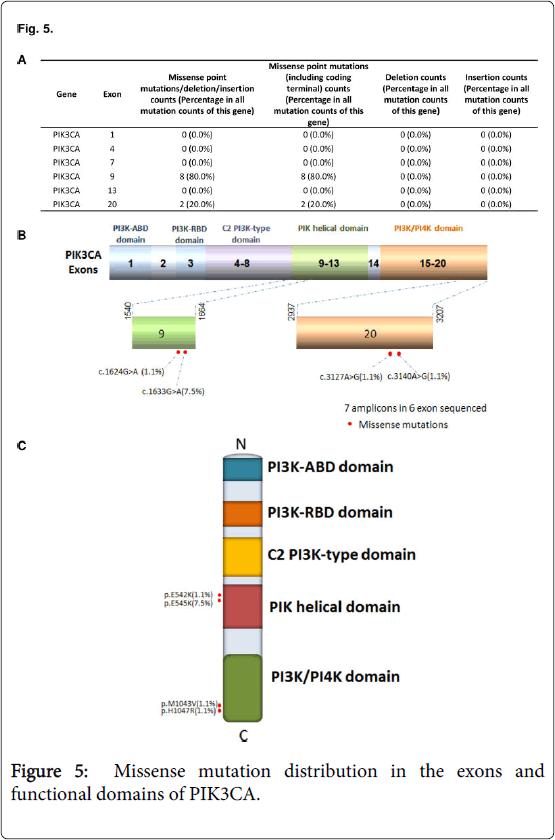 molecular-genetic-medicine-Missense-mutation-domains-PIK3CA