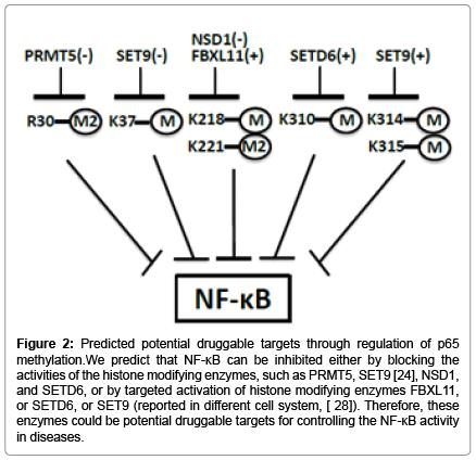 molecular-genetic-medicine-Predicted-potential-druggable