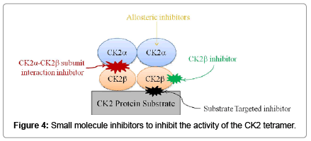 Casein Kinase 2: A Novel Player in Glioblastoma Therapy and