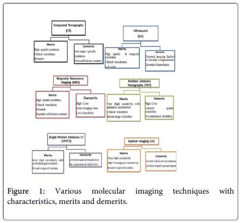 molecular-genetic-medicine-Various-molecular-imaging