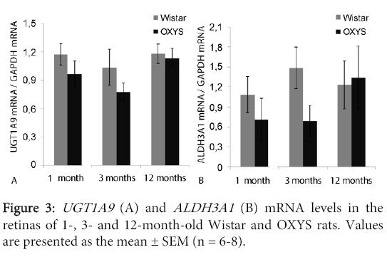 molecular-genetic-medicine-Wistar-OXYS-rats