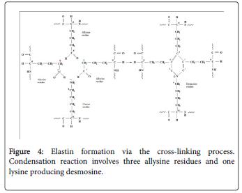 molecular-genetic-medicine-cross-linking-process