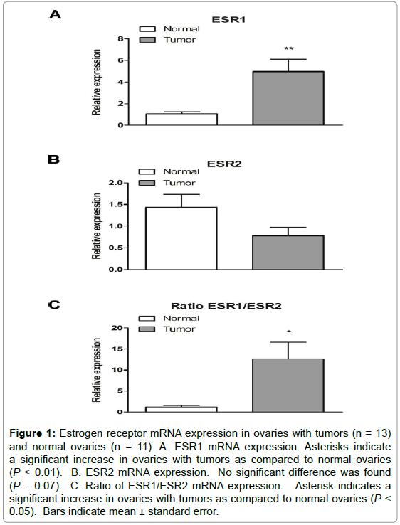 molecular-genetic-medicine-estrogen-receptor