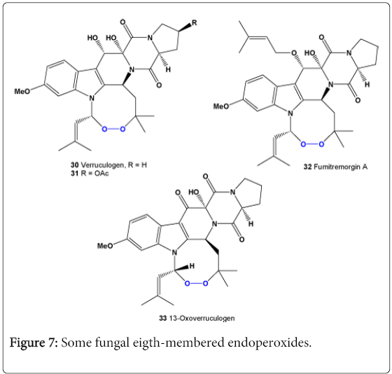 molecular-genetic-medicine-fungal-eigth-membered