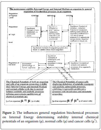 molecular-genetic-medicine-general-regulation-biochemical