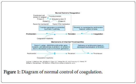 molecular-genetic-medicine-normal-control-coagulation