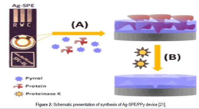 molecular-genetic-medicine-presentation-synthesis
