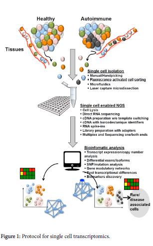 molecular-genetic-medicine-single-cell