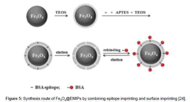 molecular-genetic-medicine-surface-imprinting