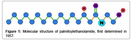 molecular-histology-Molecular-structure-palmitoylethanolamide