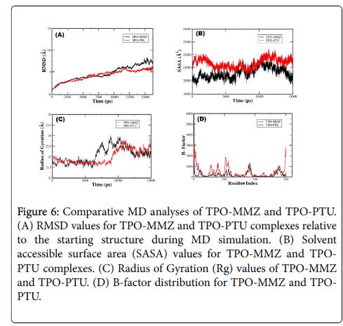 molecular-imaging-dynamics-TPO-PTU-complexes-relative
