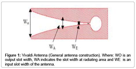 molecular-imaging-dynamics-Vivaldi-Antenna