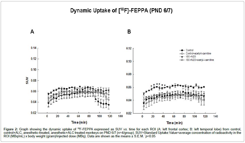 molecular-pharmaceutics-organic-dynamic-uptake