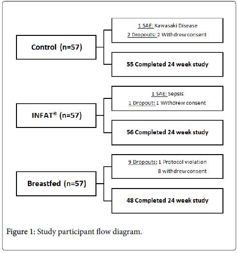 mother-child-health-flow-diagram