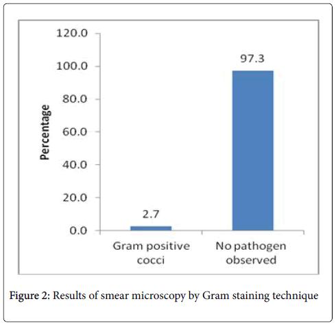 mycobacterial-diseases-Gram-staining