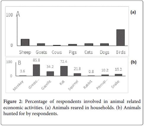 mycobacterial-diseases-animal-related