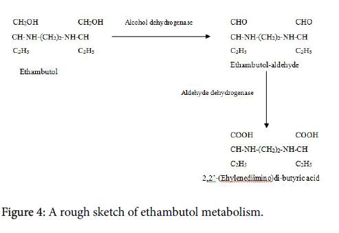 mycobacterial-diseases-ethambutol-metabolism
