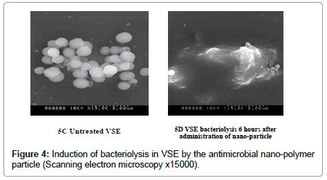 nanomedicine-biotherapeutic-Induction-bacteriolysis