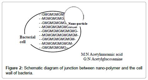 nanomedicine-biotherapeutic-Schematic-diagram