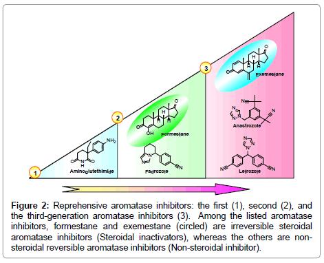 nanomedicine-biotherapeutic-aromatase-inhibitors