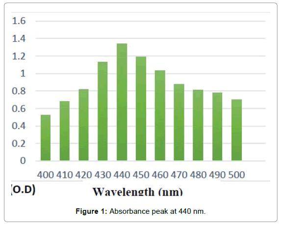 nanomedicine-biotherapeutic-discovery-Absorbance-peak