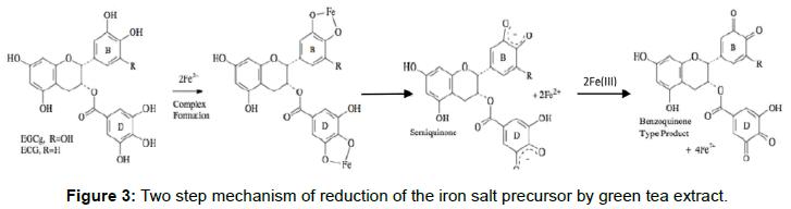 nanomedicine-biotherapeutic-discovery-green-tea-extract