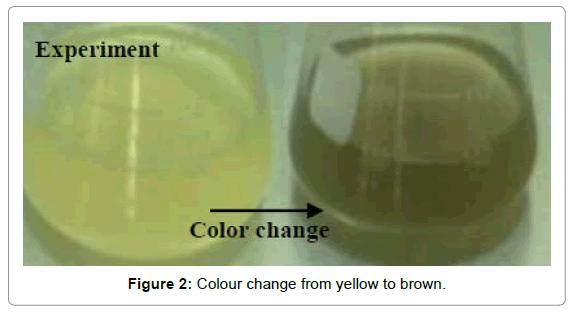 nanomedicine-biotherapeutic-discovery-yellow-brown