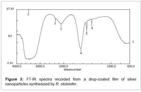 nanomedicine-biotherapeutic-drop-coated