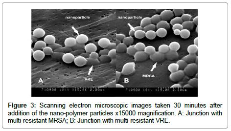 nanomedicine-biotherapeutic-electron-microscopic