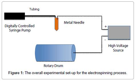 nanomedicine-biotherapeutic-electrospinning-process