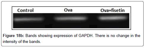 nanomedicine-biotherapeutic-microplate-cytokines
