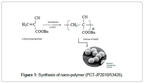 nanomedicine-biotherapeutic-nano-polymer
