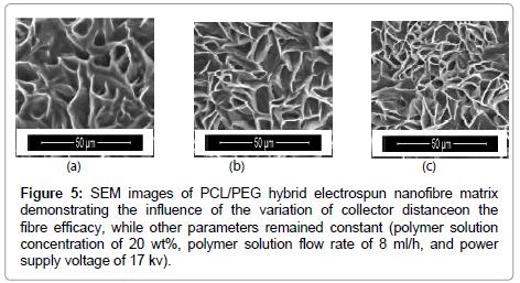 nanomedicine-biotherapeutic-nanofibre-matrix