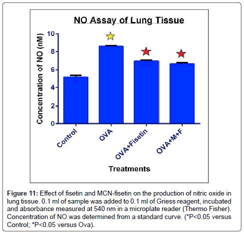 nanomedicine-biotherapeutic-nitric-oxide