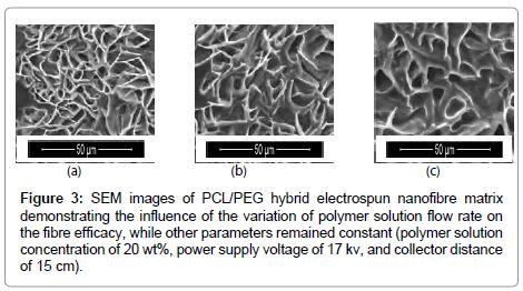 nanomedicine-biotherapeutic-solution-flow-rate