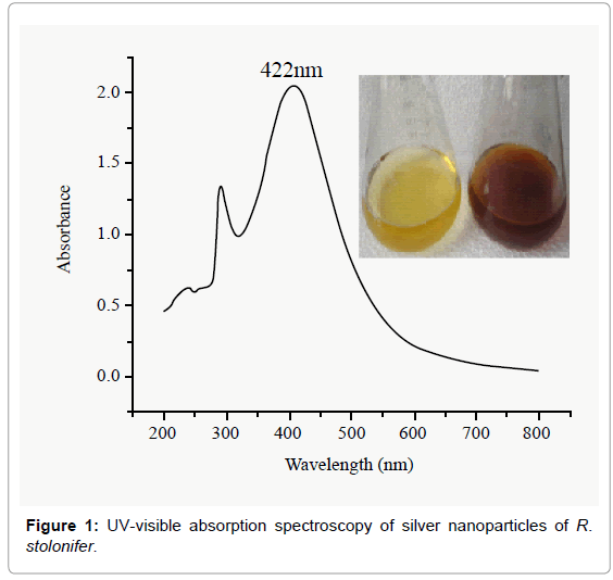 nanomedicine-biotherapeutic-spectroscopy