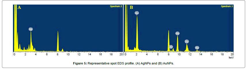 anomedicine-nanotechnology-Representative-spot-profile