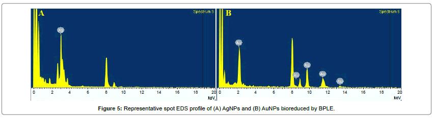 anomedicine-nanotechnology-Representative-spot-profile-bioreduced