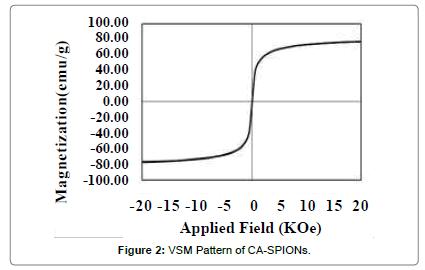anomedicine-nanotechnology-VSM-Pattern-SPIONs