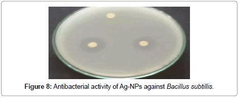 nanomedicine-nanotechnology-bacillus-subtillis