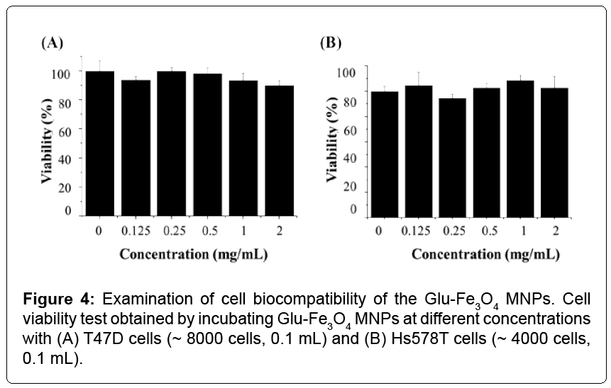 nanomedicine-nanotechnology-biocompatibility